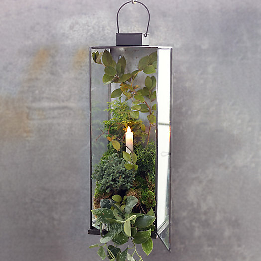 View larger image of Shop the Look: Lush Forest Planted Lantern