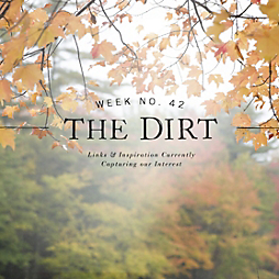 The Dirt | 2014 | week no. 42