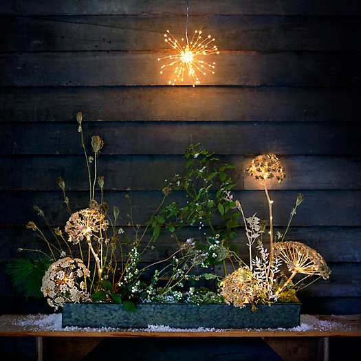 View larger image of Shop the Look: A Glowing Forest Floor