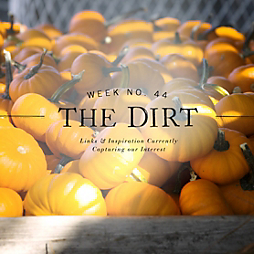 The Dirt | 2014 | week no. 44