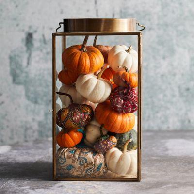 Shop the Look: Pumpkins A Plenty