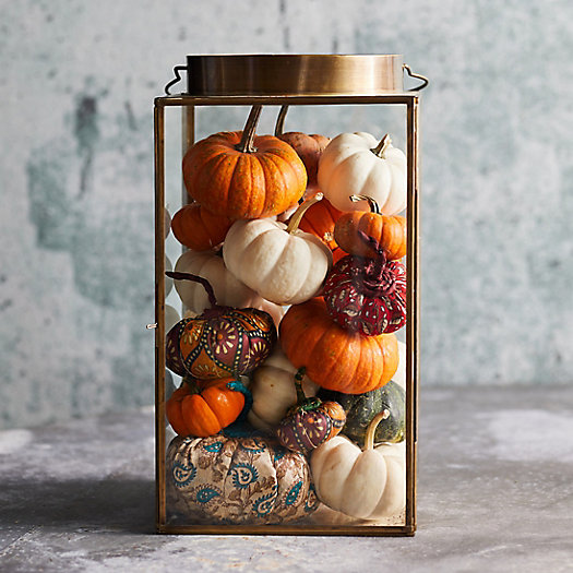 View larger image of Shop the Look: Pumpkins A Plenty