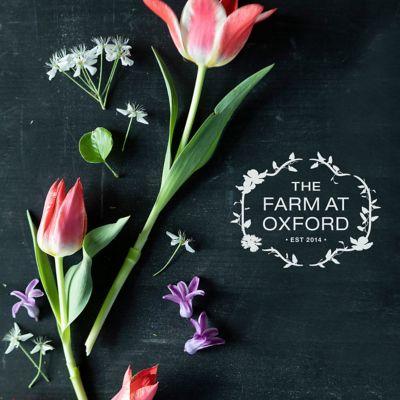 The Farm at Oxford