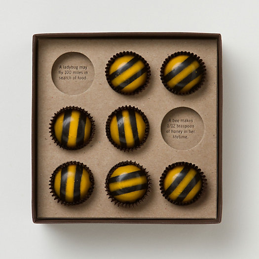 View larger image of John & Kira's Chocolate Bees
