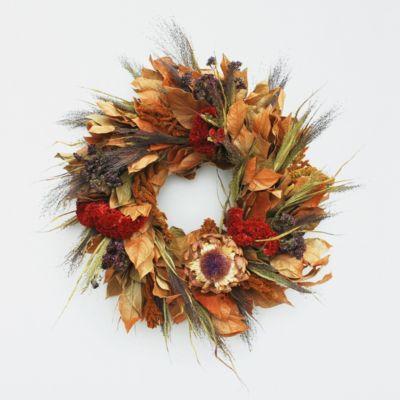 Sun Bleached Cardoon Wreath