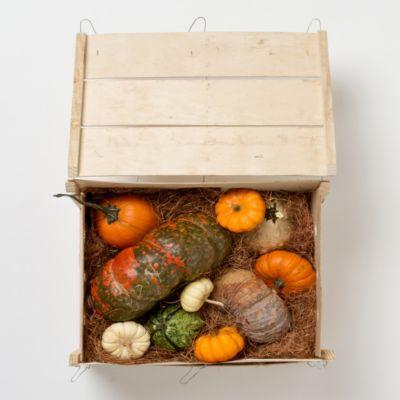 Fresh Pumpkin Crate