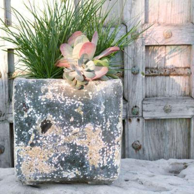 Barnacle Cube Pot