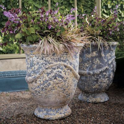 Barnacle French Urn