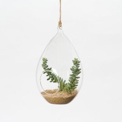 Hanging Teardrop Terrarium