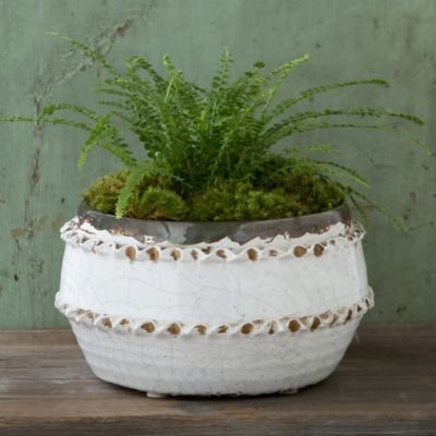 Fluted Lace Pot