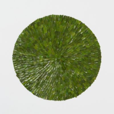 Preserved Boxwood Placemat