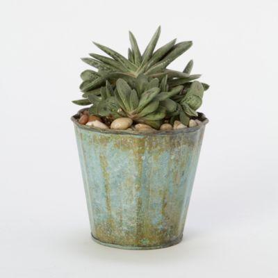 Vintage Ridges Pot