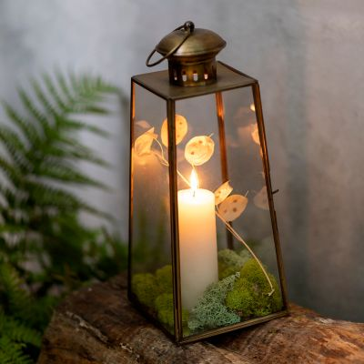 Shop the Look: A Glowing Forest Floor-Inspired Lantern Look