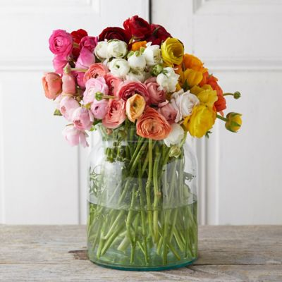 Fresh Rainbow Ranunculus Bunch