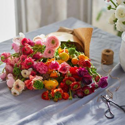 Fresh Rainbow Ranunculus Bunch