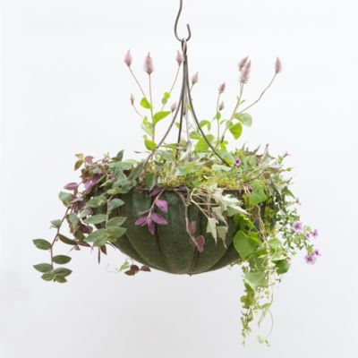 Chandelier Hanging Basket