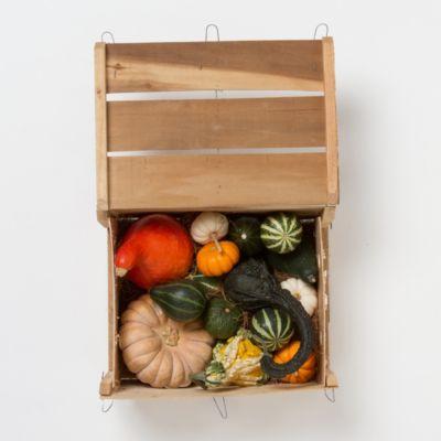 Fresh Pumpkin & Gourd Crate