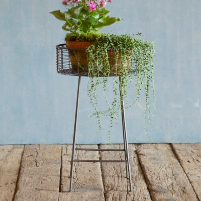 Round Basket Plant Stand, Small