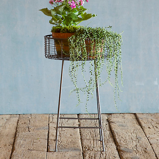View larger image of Round Basket Plant Stand, Small