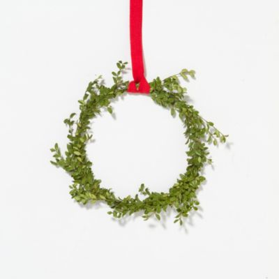 Fresh Boxwood Circlet Wreath