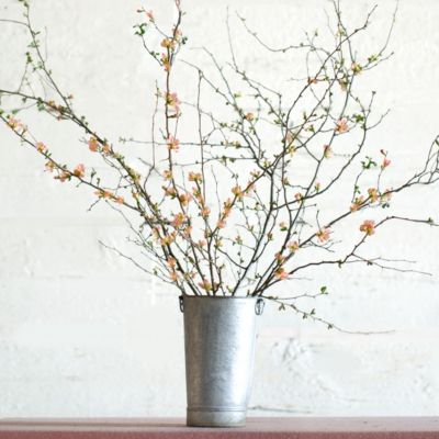 Salmon Quince Branches