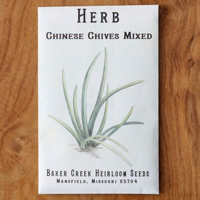 Chinese Chive Seeds