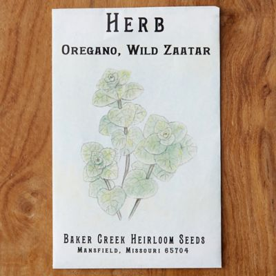 Zaatar Oregano Seeds