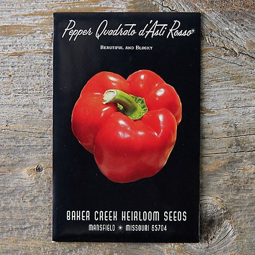 View larger image of Quardato D'Asti Rosso Pepper Seeds