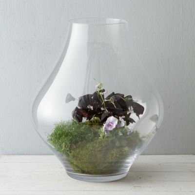 Tall Drop Terrarium
