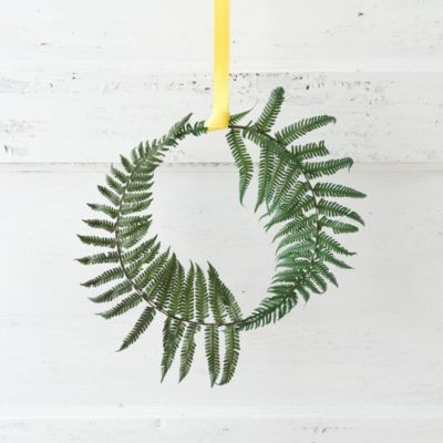 Preserved Parchment Fern Circlet*