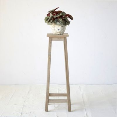Protected Teak Plant Stand, Tall