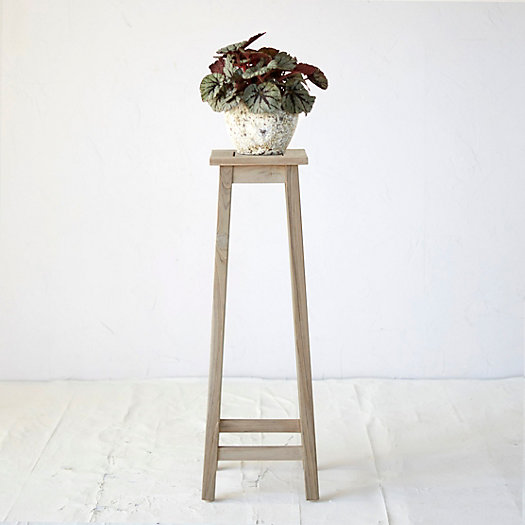 View larger image of Protected Teak Plant Stand, Tall