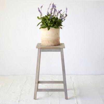 Protected Teak Plant Stand, Medium