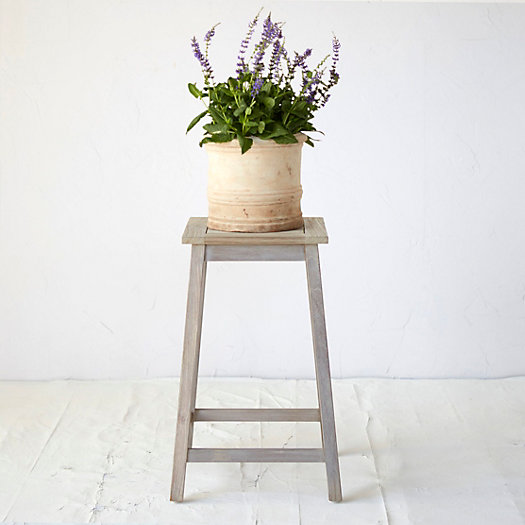 View larger image of Protected Teak Plant Stand, Medium