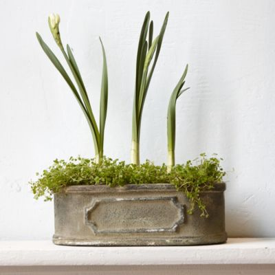 Cast Iron Nameplate Planter