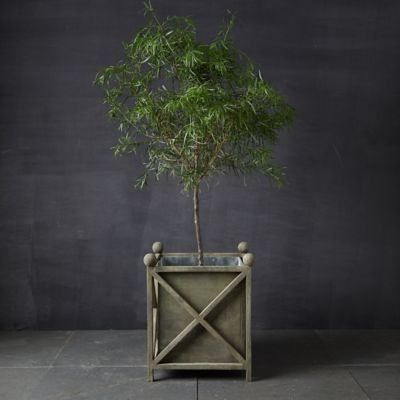Iron Cross Frame Planter