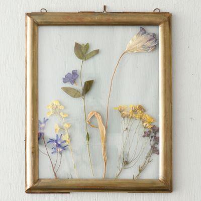 Brass Molding Specimen Frame