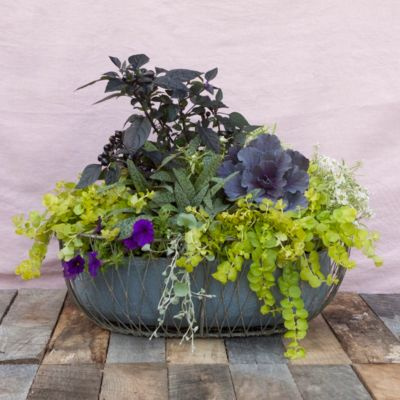Wired Zinc Oval Planter