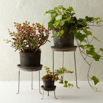 Silver Footed Tall Plant Stand