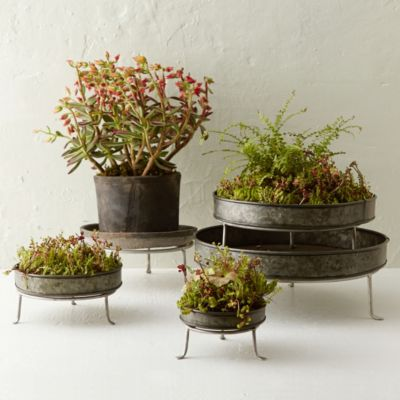 Silver Footed Low Plant Stand