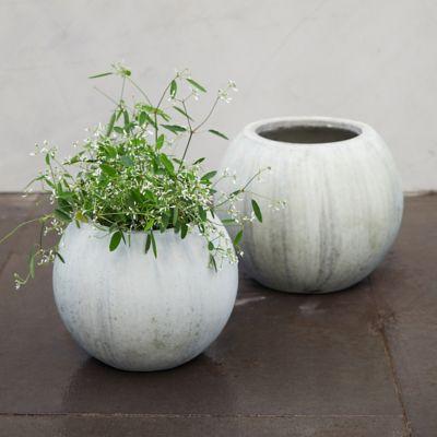 Mossy Sphere Planter