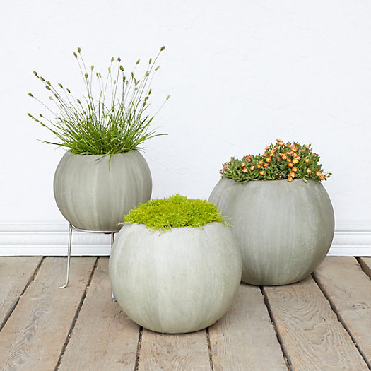 View larger image of Mossy Sphere Planter