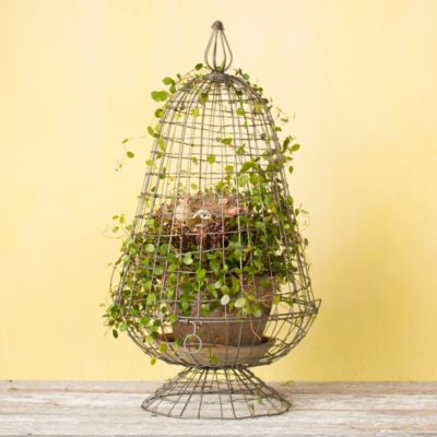 Wire Egg Cloche, 12""