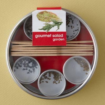 Salad Garden Seed Kit