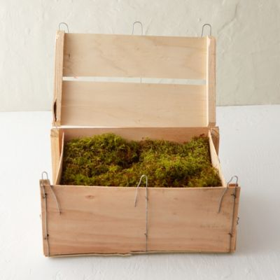 Fresh Sheet Moss Crate
