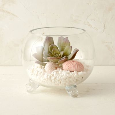 Elevated Fishbowl Terrarium