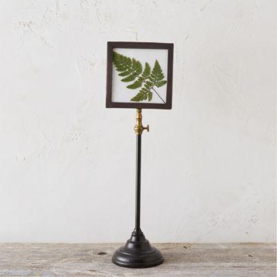 Standing Specimen Frame, Small*