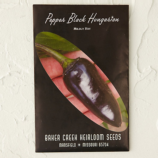 View larger image of Black Hungarian Pepper Seeds