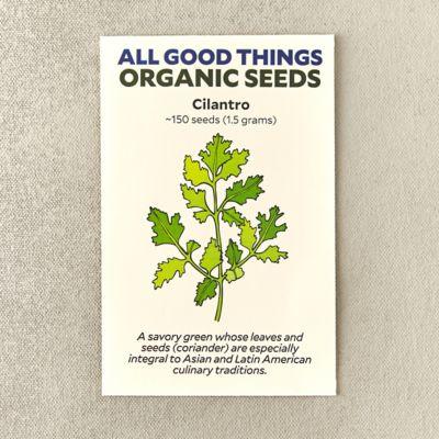 Organic Cilantro Seeds