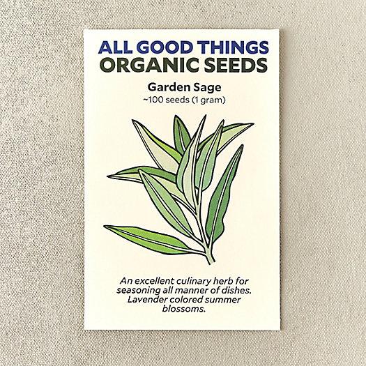 View larger image of Organic Garden Sage Seeds